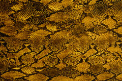Texture of print fabric striped snake leather for background. Used as raw material for screen and print pattern Stock Photography