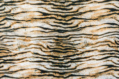 Texture of print fabric striped tiger. For background stock image