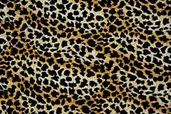 Texture of print fabric stripes leopard for background. Materials for print and the background stock image