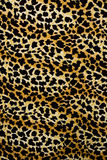 Texture of print fabric stripes leopard for background. Materials for print and the background stock photography