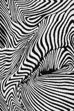 Texture of print fabric stripes zebra Royalty Free Stock Image