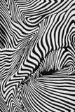 Texture of print fabric stripes zebra Royalty Free Stock Image