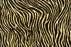 Texture of print fabric stripes zebra Stock Photos