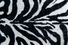 Texture of print fabric stripes zebra for background Royalty Free Stock Image