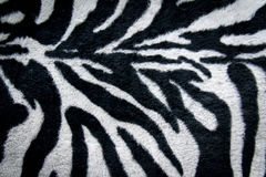 Texture of print fabric stripes zebra for background Stock Photography