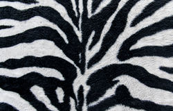 Texture of print fabric stripes zebra for background Stock Photo