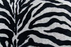 Texture of print fabric stripes zebra for background Stock Images