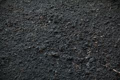 Texture of processed black earth. Interesting abstract texture. Section of chernozem after processing with a garden tool royalty free stock images