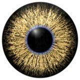 Texture profonde attrayante pointue 3D 13 d'oeil Illustration Libre de Droits