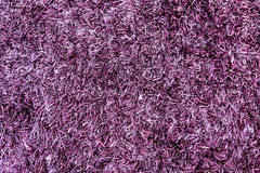 Texture of a purple carpet Royalty Free Stock Photo