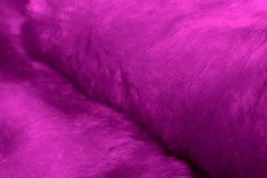 Purple fur macro Stock Photos