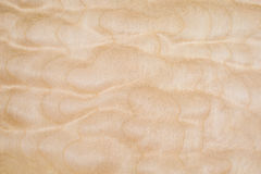 Texture of Quilted Maple Royalty Free Stock Photo