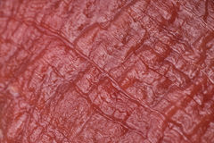 Texture of raw meat. The texture of raw red meat close-up Royalty Free Stock Photography