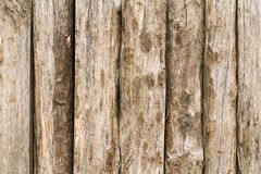 Texture of raw rustic wood. Can be used as background stock photo