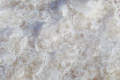 Texture of raw salt under sea water in evaporation ponds process Royalty Free Stock Photography