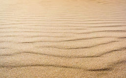 Texture of the real sand waves Stock Image