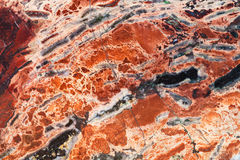 Texture of red brecciated jasper mineral gem stone Stock Images