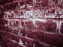 Texture of a red brick wall, dark background Royalty Free Stock Photos