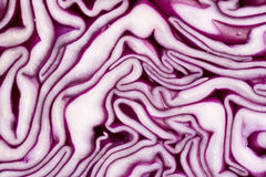 Texture of red cabbage Royalty Free Stock Images