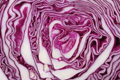 Texture of red cabbage close up. Macro Royalty Free Stock Photo