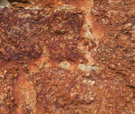 Texture of red coquina Royalty Free Stock Photo
