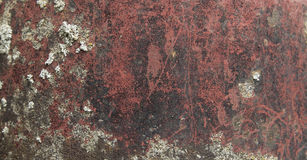 Texture. With red, dark and lichen pattern stock photos