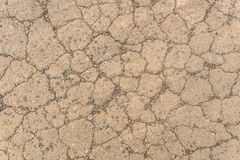texture of red dry soil for brackground Stock Photography
