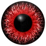 Texture red eye 3d with white lines. And black fringe Stock Image