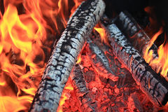 Texture red fire embers. In bonfire Stock Images