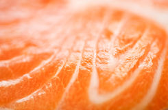 Texture of red fish Royalty Free Stock Images