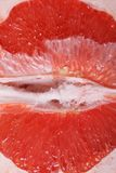 Texture of red grapefruit pulp macro Royalty Free Stock Image