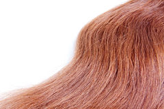 Texture of a red hair Royalty Free Stock Photos