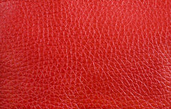Texture - red leather Stock Photos