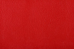 Texture of red leather Stock Image
