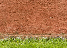 Texture of the red rough plastered wall with grass and flowers Stock Photos