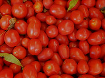 Texture of red tomatoes Stock Image