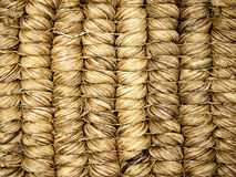 Texture of reed mat Stock Image
