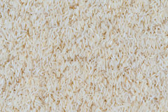 Texture of rice grain (jasmine rice) Royalty Free Stock Photo