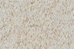Texture of rice grain (jasmine rice) Royalty Free Stock Photo
