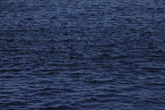 Texture of ripple on blue water. Texture of ripples on the blue water in the daytime Royalty Free Stock Images