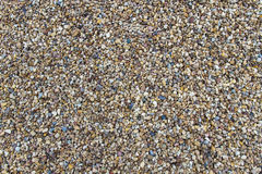 Texture River Gravel Stock Photos