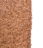 Texture of roasted brown flax seed or linseed Royalty Free Stock Images