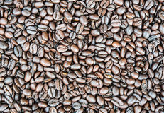 Texture of roasted coffee beans Royalty Free Stock Images