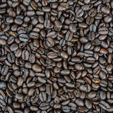 Texture of roasted coffee beans Royalty Free Stock Photos