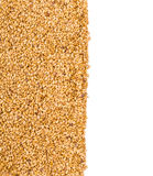Texture of roasted golden flax seed or linseed Stock Photography