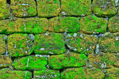 Texture of rock wall overgrown with moss Stock Image