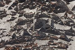 Texture rocky shore with sand Stock Image