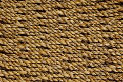 Texture of rope Stock Image