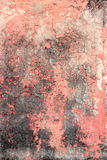 Texture rose de mur Photographie stock libre de droits