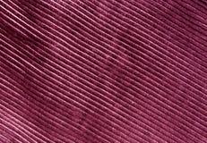 Texture rose de tissu de couleur avec le modèle Photos stock